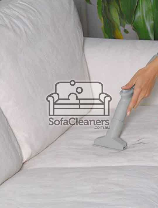 clean sofa with steam yourself